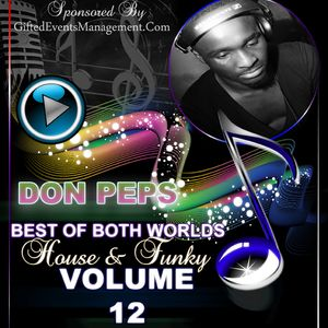 The Official DJ Don Peps Volume 12 (Best Of Both Worlds)