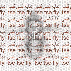 Tse Tse Fly - 4th June 2016