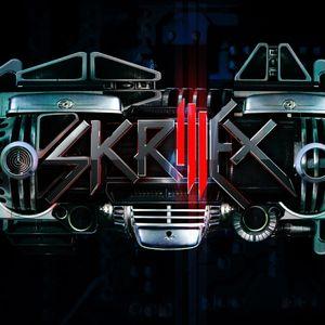 DJ Carpet cat- SkrillexCATmix