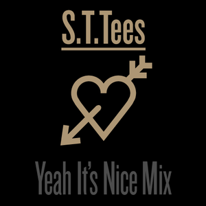 S.T.Tees - Yeah It's Too Sweet Mix