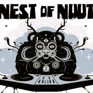 Nest of Nuut @ UG 2012-01-14