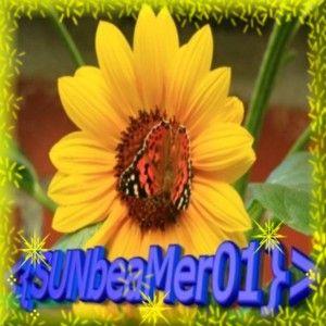 SUNbeaMer01 by mcschippe