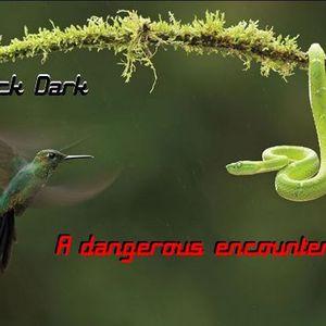 A dangerous encounter - 2 hour promo set recorded live 25/08/2012.