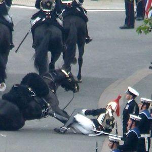 Bonehorse Royal Wedding Special