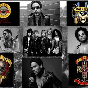 GnR and LK