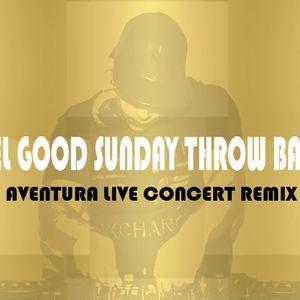 DJ NYCHE AVENTURA LIVE CONCERT REMIX