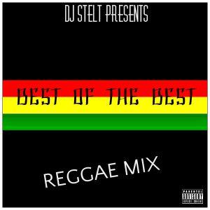 DJ STELT - BEST OF THE BEST REGGAE MIX 2016 by DJ A1_876