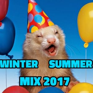 Winter Summer Mix 2017