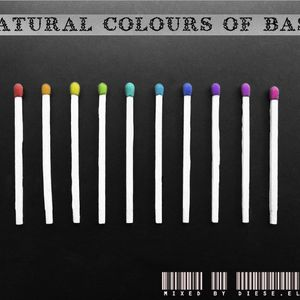 Dièse.elle - Natural colours of bass