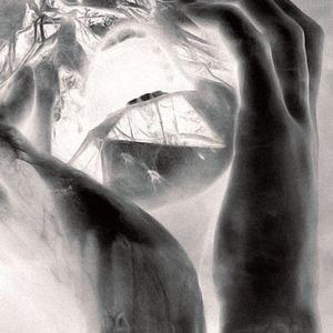Tauber - 191213- | Torture-Techno | Schock Sequenz TT1