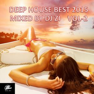 DEEP HOUSE 2015 BEST VOCAL MIXED BY DJ ZI Vol -2