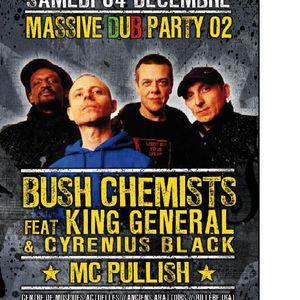 02-Massive dub Party-Mc Pullish