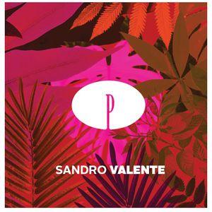 PRIVILÈGE TOUR 2015 by SANDRO VALENTE