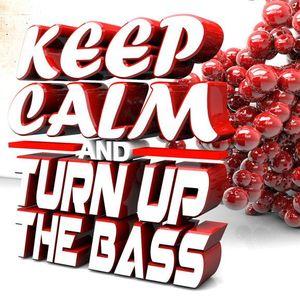 David Deekay - Keep Calm & Turn Up The Bass 01