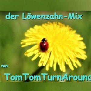 ☀ Der Löwenzahn-Mix ☀