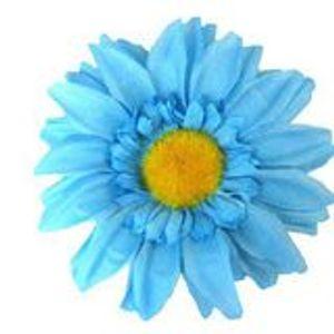 18-09-17 The Blue Sunflower Show