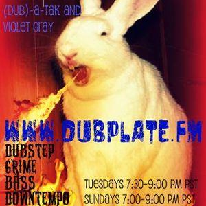 Danger Dub Radio 1/3/10 - Violet Gray & Dub-a-tak