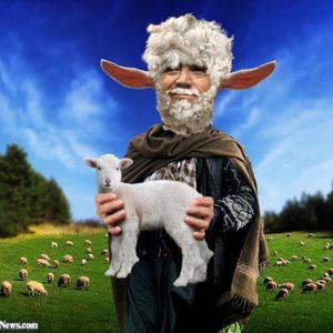 Sheepness Overload 006