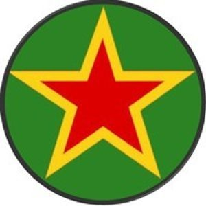 RED STAR MARTYRS/DUB ON THE DART 02/03/13….THE RIVIERA ROCKERS