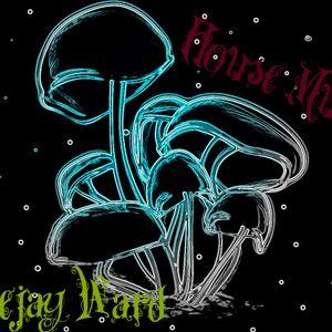 DJ Ward - My January Set (2012)