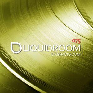 Liquid Room mixed by Ryu @ dnbradio.com 7/01/2014
