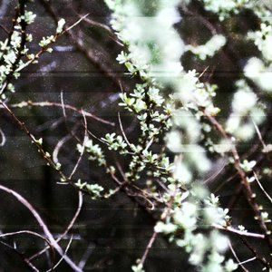 Irish Ambient Mix - May 2010
