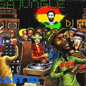 podcast 10 ragga jungle & ragga dnb