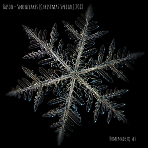 Rasdo - Snowflakes (Christmas Special 2018) Homemade djset