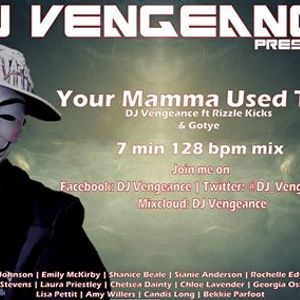 Your Mamma Used To ? - DJ Vengeance