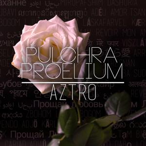 Pulchra Proelium