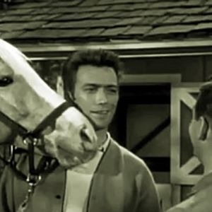 Mister Ed - Back In The Saddle