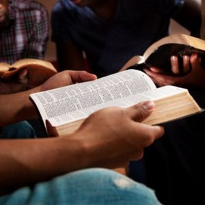 The Law of Mercy: Part II - La Ley de la Misericordia: Parte II