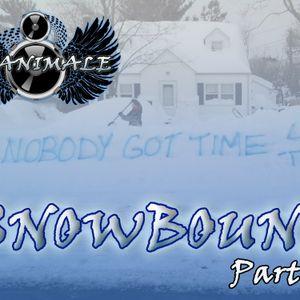 DJ ANIMALE Presents SNOWBOUND Part 1