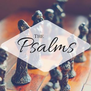 Trusting In The Son Of Man - Psalm 146