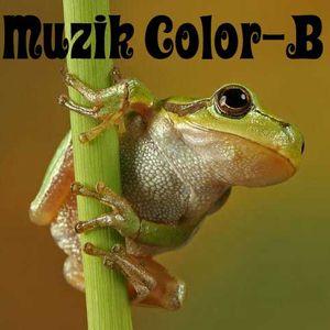 Muzik Color-B