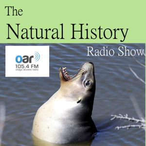 Natural History Show - 17-12-2016 - NZ Sea Lion Trust - Steve Broni and Amelia Saxby
