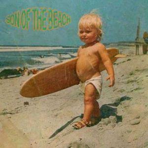 C79 №5  Son Of The Beach