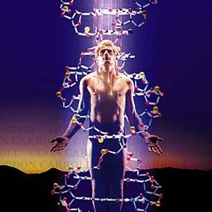 """The Influence """"DNA"""""""