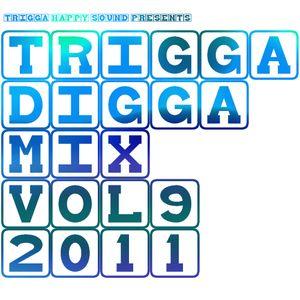 TRIGGA DIGGA MIX VOL. 9