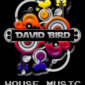 David Bird - GyM Tech-House GyM