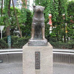 Lost in Shibuya - Part 1