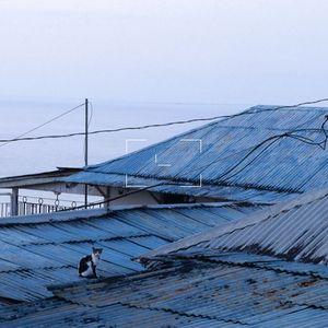 Under The Tin Roof/$kinny Cee a.k.a CE$