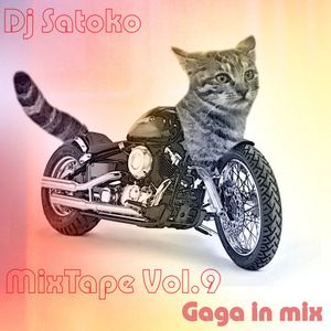 Gaga In Mix