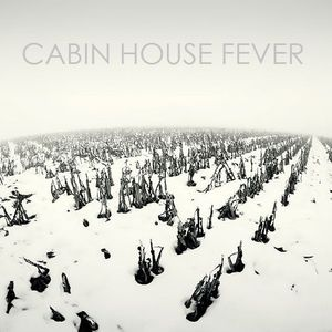 Olivetonic - CabinHouse Fever 1