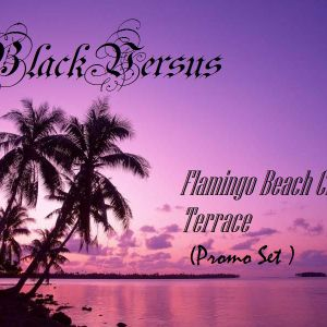 BlackVersus @ Flamingo Beach Club Promo