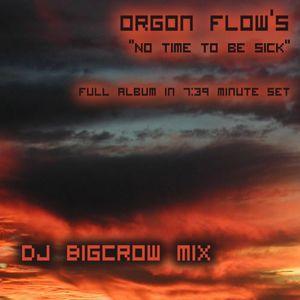 Dj BigCrow - No time to be Sick
