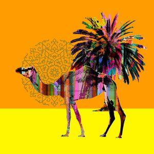 Desert Jazz II - Oasis of Odyssey  (June 2018)