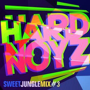 DJ Hardnoyz - Sweet Oldskool Jungle (Pt.3)