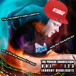January Highlights - The Prague Connection show w/ Blofeld - Bassdrive.com - vol. 123