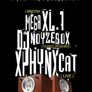 MEGA XL1 - BATMAN PARTY SESSION (31-08-10)